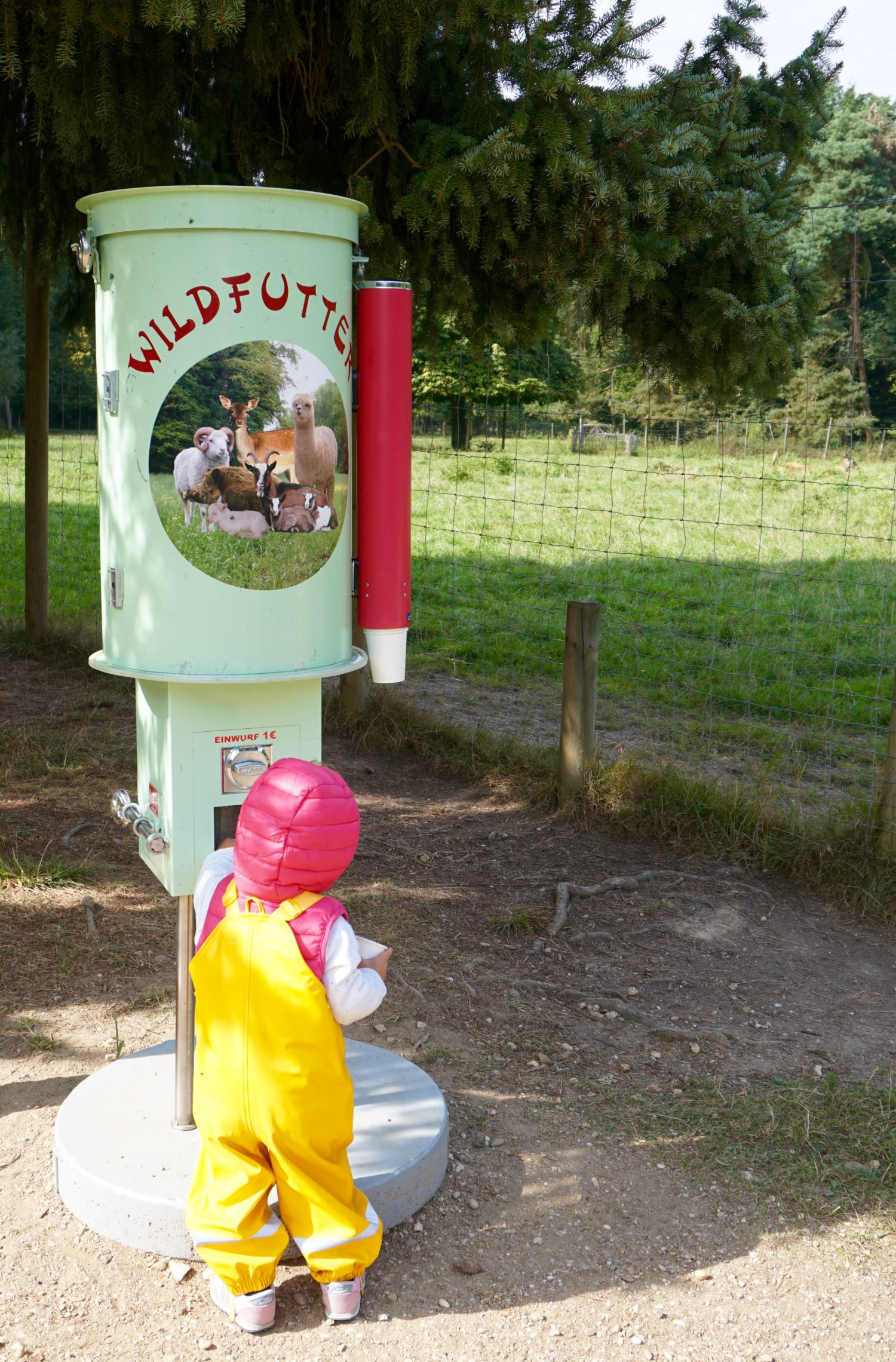 spielplatz-plus-wildpark-waldau-in-bonn15
