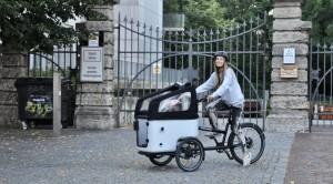 Cargobike - Butchers & Bycicles MK1 Bericht von Susamamma